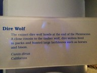 The Ice Ages Gallery: Dire Wolf sign