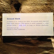 The Ice Ages Gallery: Ground Sloth sign