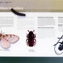 Alien Invaders exhibit - backdrop panel #1 (exhibit area 1)