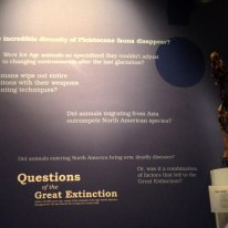 The New Ice Ages: Questions of the Great Extinction wall