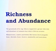 The New Ice Ages: Richness and Abundance sign