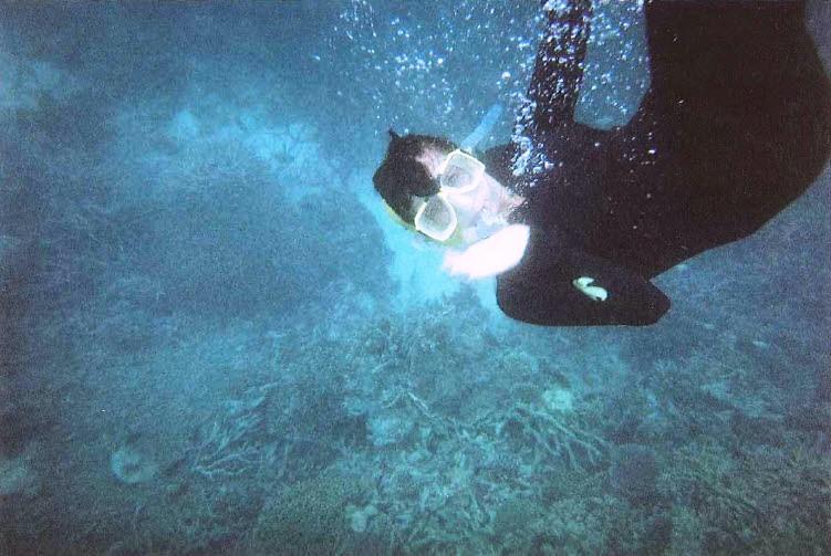 Snorkel Girl on the Great Barrier Reef Queensland Australia