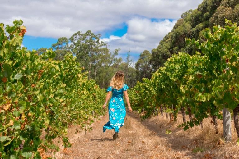 Hay Shed Hill Vineyard Run