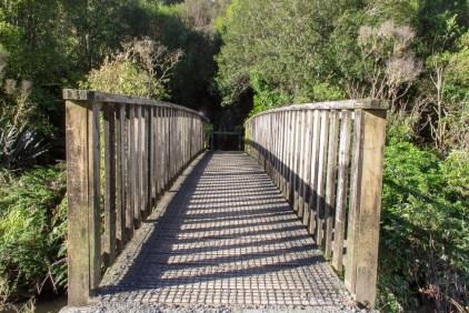 Mangapohue Natural Bridge 1