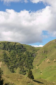Waitomo New Zealand 2