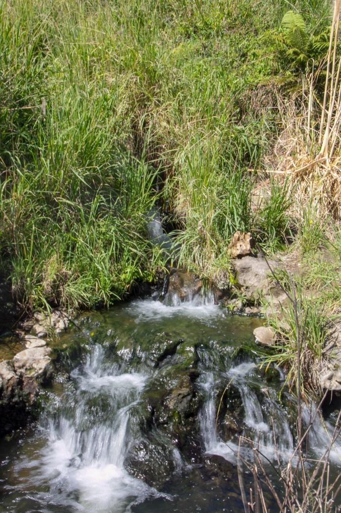 Taupo - Hot Springs