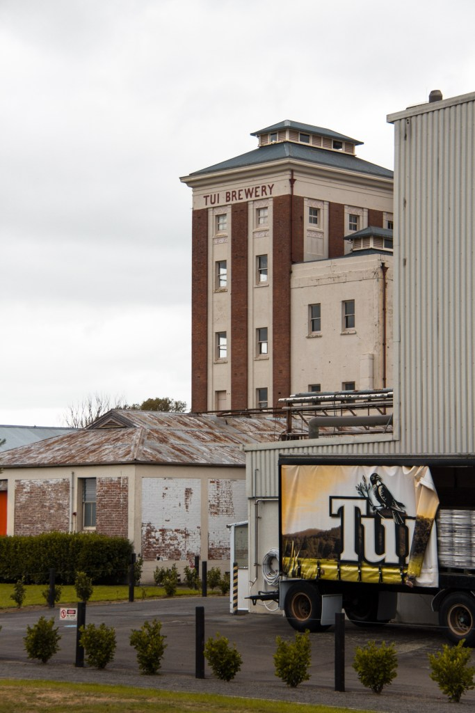Tui Brewery 6