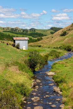 1 New Zealand Rolling Hills 5