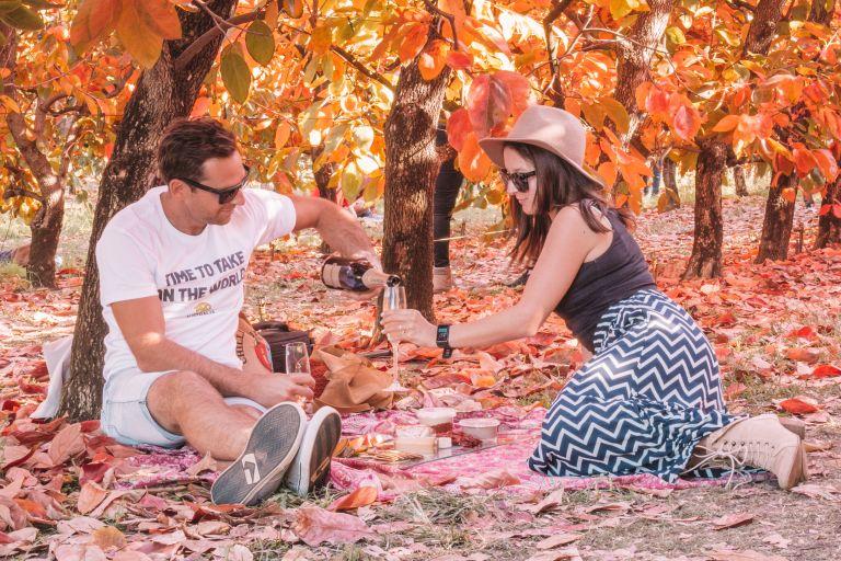 Raeburn Orchard Persimmon Festival 2