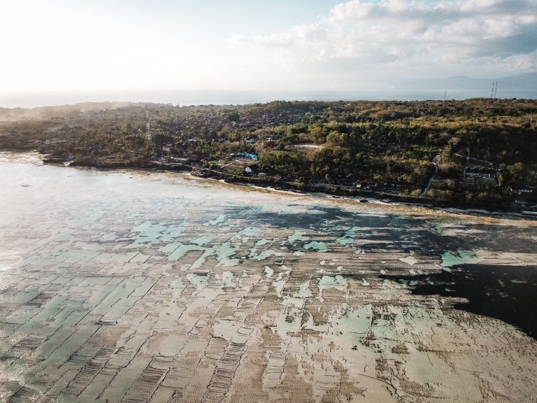 Explore Nusa Lembongan Bali Indonesia Seaweed Farm
