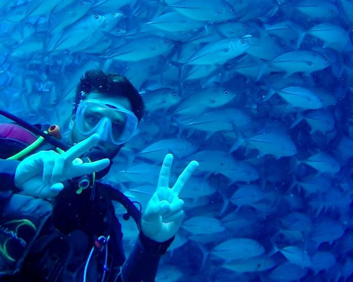 Balicasag Island Bohol Philippines Scuba Diving