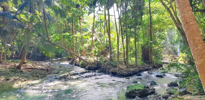 Kawasan Falls Cebu Philippines