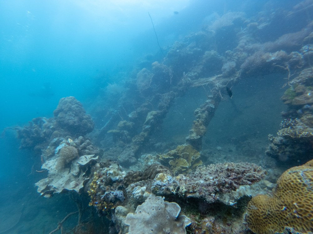 Shipwreck Diving Coron Palawan Philippines