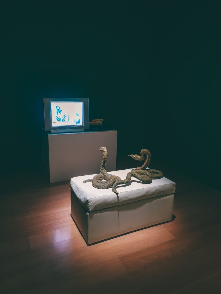 Snakes watching TV MALBA Buenos Aires Argentina South America