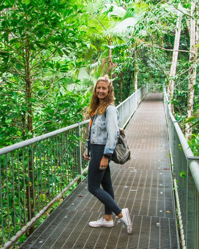 Daintree Rainforest Discovery Centre Queensland Australia