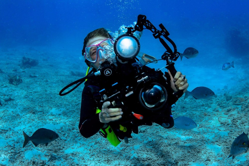 Underwater Photographer Great Barrier Reef Cairns Queensland Australia