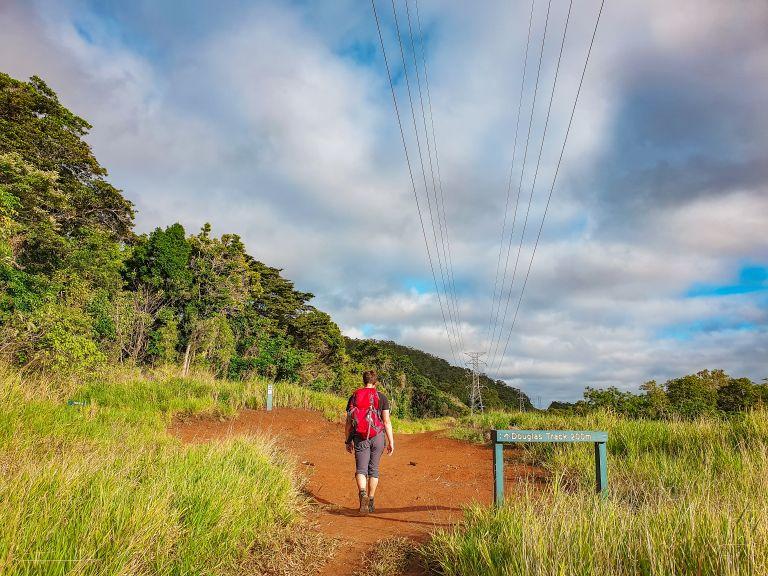 Stoney Creek Douglas Track Cairns Queensland Australia