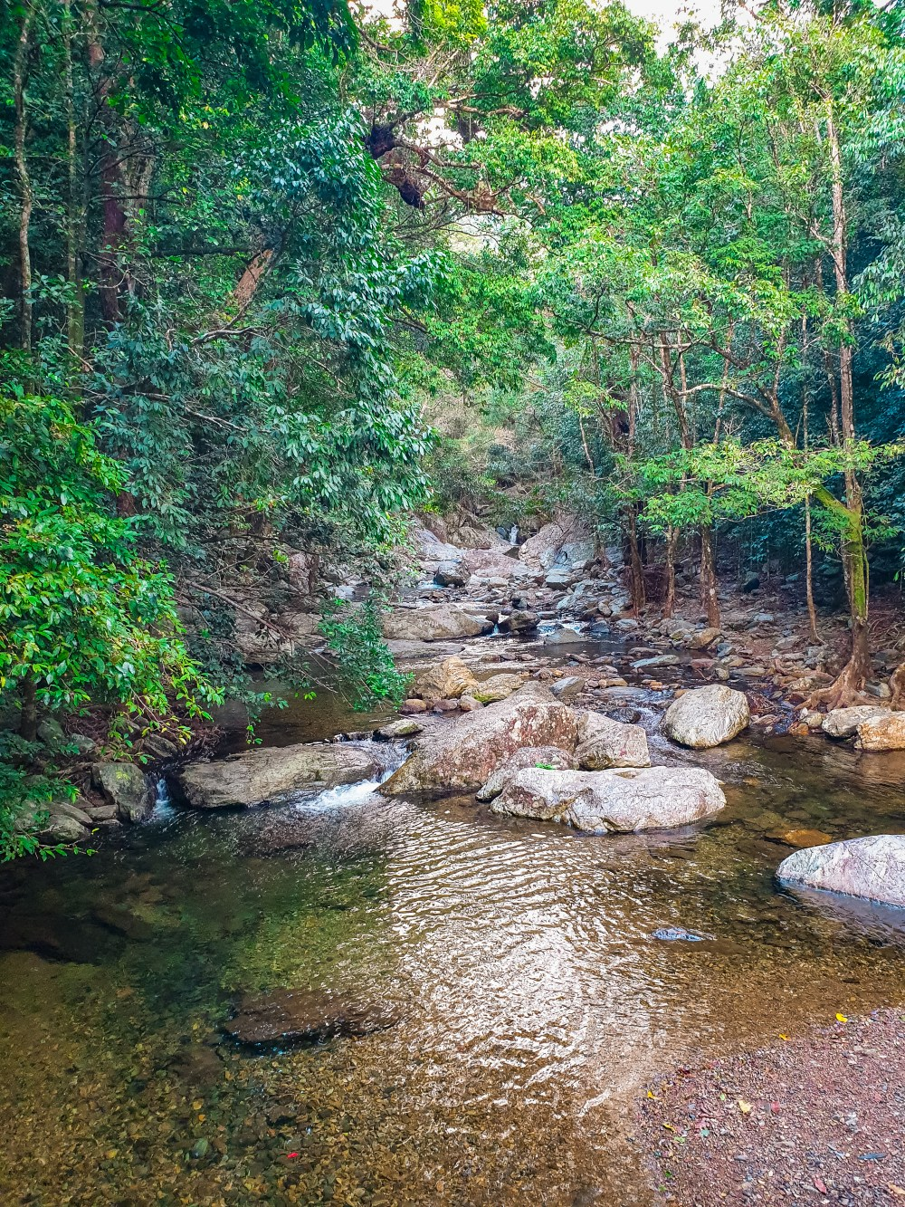 Stoney Creek Swimming Hole Cairns Queensland Australia
