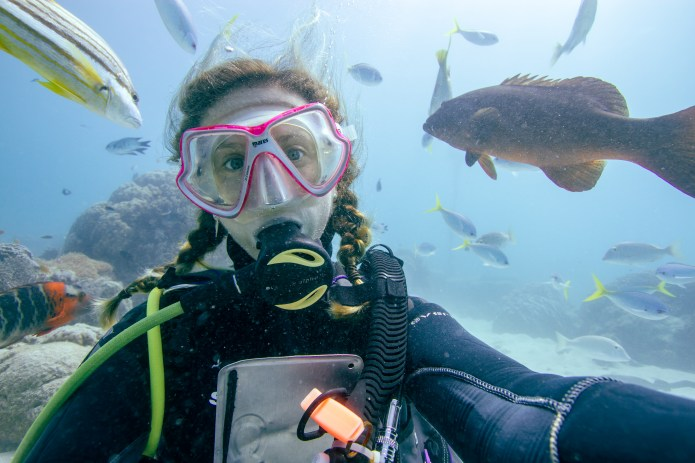 Fish Cairns Great Barrier Reef Scuba Diver Queensland Australia