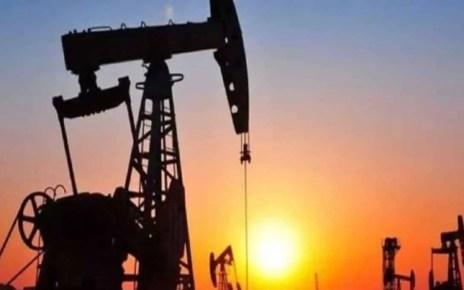 """El acuerdo de recorte de producci?n de petr?leo de la OPEP+ fue calificado de """"hist?rico"""", con el fin de logar un alza de sus precios en medio la pandemia."""