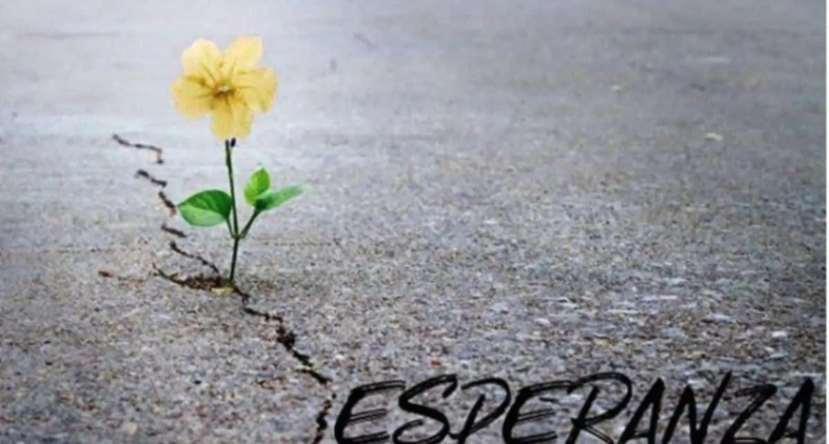 """""""Esperanza"""", el poema que emociona al mundo en medio de la pandemia, autor?a de Alexis Vald?s , un actor y humorista cubano que vive en Miami"""
