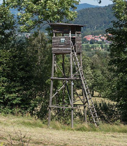 Ambona w Górach Bialskich. Foto: Jacek Halicki, Źródło: Wikipedia.org