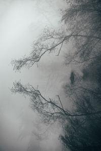 Experiența depresivă - o perspectivă fenomenologică