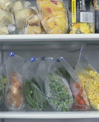 Comment Congeler Des Haricots Verts Frais : comment, congeler, haricots, verts, frais, Astuces, Congeler, Légumes, Potager