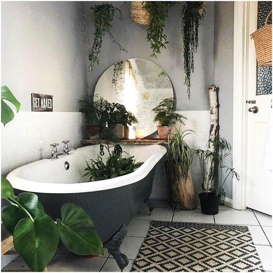 mettre les plantes dans une baignoire