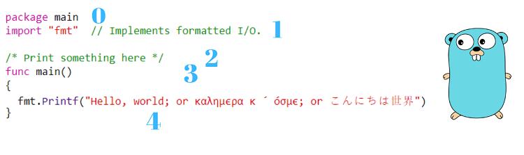 First Hello World Program using Go Language