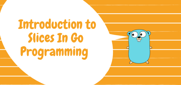 Introduction to Slices in Go Programming