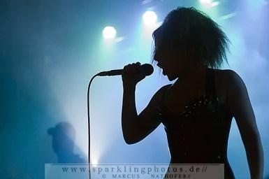 2011-11-13_KMFDM_-_Bild_002.jpg