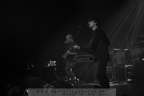 2013-02-01_Grauzone_Festival_-_Chameleons_Vox_-_Bild_005.jpg