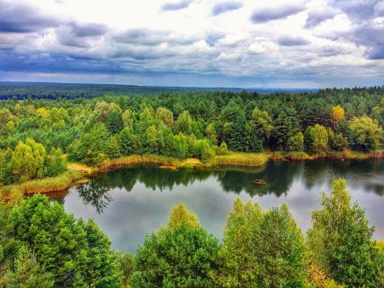 Wielkopolski National Park,near Poznan, Poland.