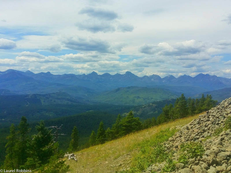 View of the Rocky Mountains in the Castle Crown Wilderness