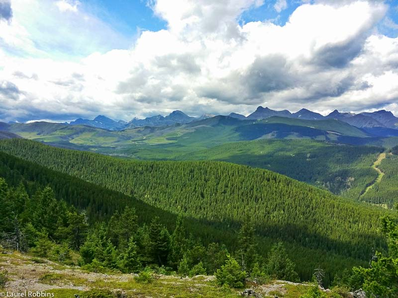 Gorgeous views of the Crowsnest Pass from Turtle Mountain.