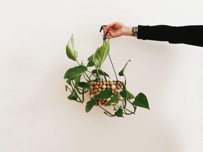DIY Pflanzentopf mit Holzkugeln verzieren