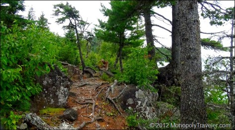 Taking the Trail by Huginnin Cove