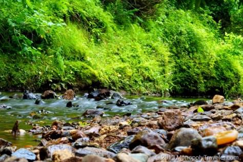 Silky Motion Rapids