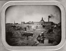 Vintage Daguerreotypes Of St. Louis 1848-70