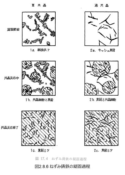 図2.8.6_ねずみ鋳鉄の凝固過程