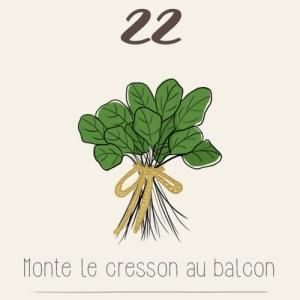 La semis, la culture et la récolte du cresson sur un balcon - illustration