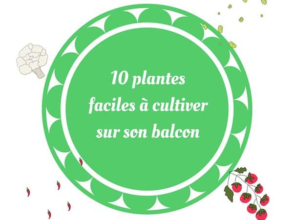 Liste de 10 plantes faciles au potager de balcon