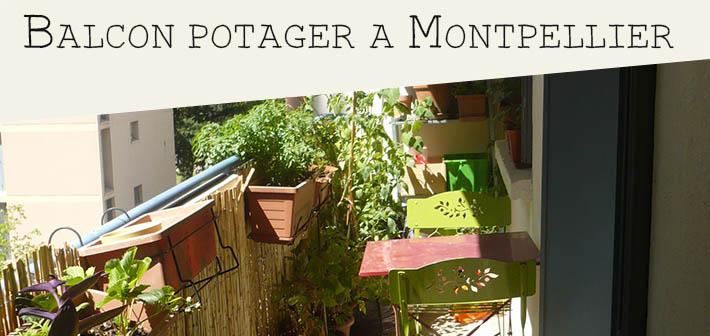 Montpellier : comment créer son potager de balcon en appartement