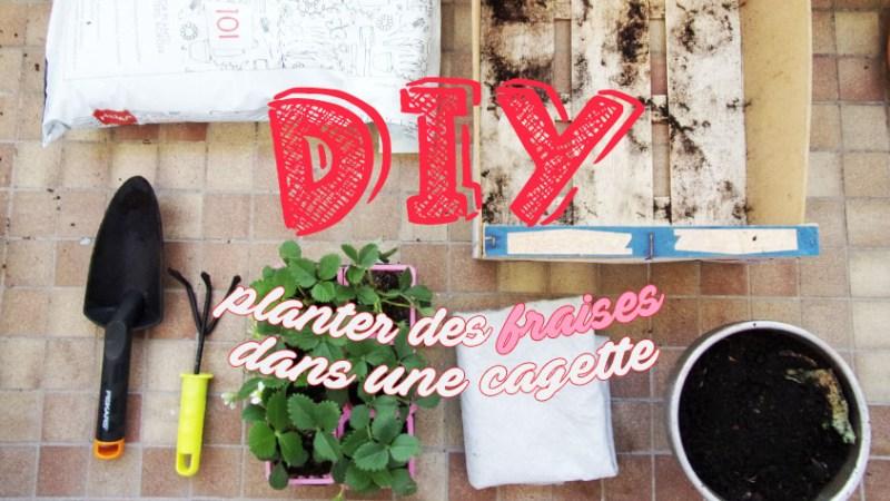 Planter des fraisiers en cagette (tuto plantation)