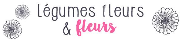Légumes fleurs et fleurs