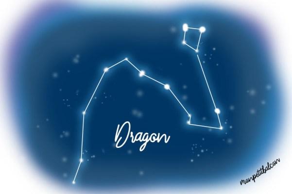 Constellation du dragon dessinée Nuit des étoiles 2016