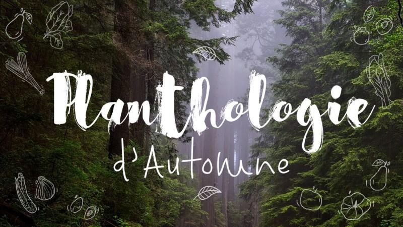 Planthologie d'automne