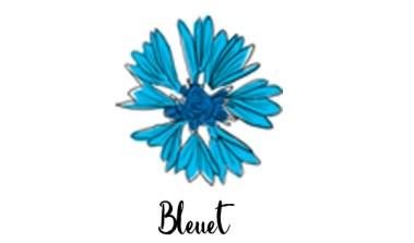 illustration bleuet bleu des champs mon petit balcon au potager