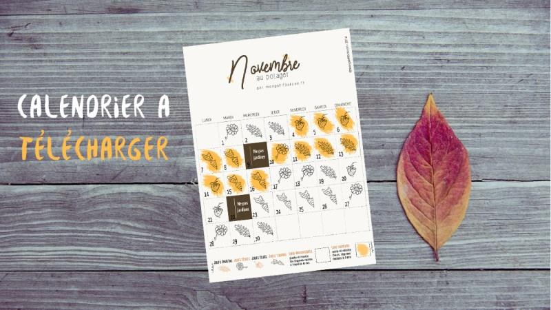 Novembre : comment jardiner avec la lune au potager